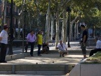 A foreigner's guide to pétanque