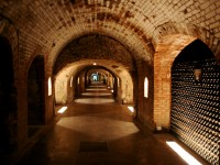The best vineyards in southern France